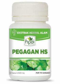 Pegagan HS HPAI
